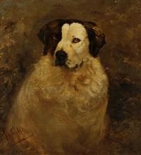 portrait of a dog by johannes frederik hulk the elder