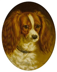 portrait of a cavalier king charles spaniel by george jackson