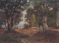 bewaldete küstenlandschaft by fanny assenbaum