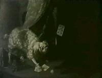 deux chiens se disputant un                 jeu de cartes by gabriel rouette