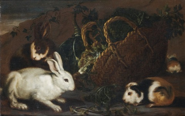 lapins et cochons dinde autour dun panier dherbes by giovanni agostino abate cassana