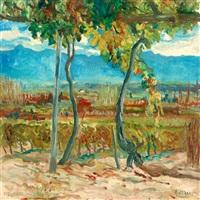 paisaje mendocino by roberto azzoni