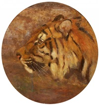 tigerkopf by carl appel
