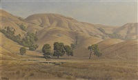 rolling california hills in summer by jack wisby