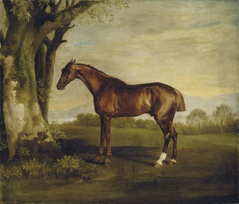 antinoüs a chestnut racehorse in a landscape by george stubbs