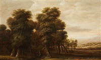 a wooded landscape with travellers by jacob van geel