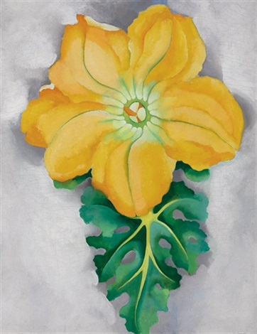 squash blossom no ii by georgia okeeffe