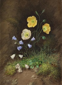 hillside flowers and companion (2 works) by theodor petter