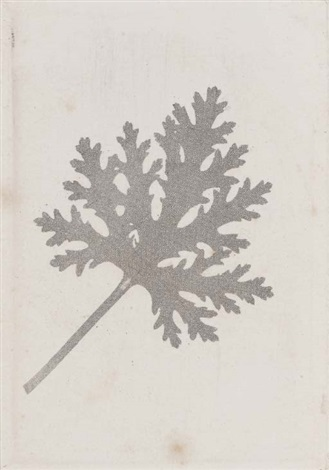 scented geranium leaf with superimposed gauzecrape pattern 2 others 3 works various sizes by william henry fox talbot