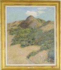 desert landscape by ben foster