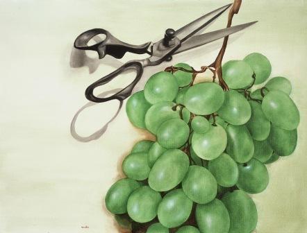 grapes by amalia haas