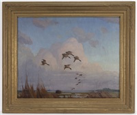 ducks coming in by reveau mott bassett