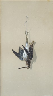 nature morte, snipe by achille perelli