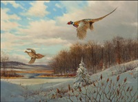 back to cover - pheasants by owen j. gromme