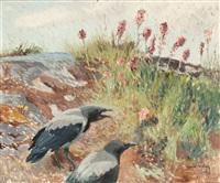kråkor i vegetation by harald wiberg