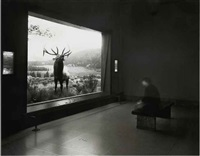 self-portrait contemplating wapiti by matthew pillsbury