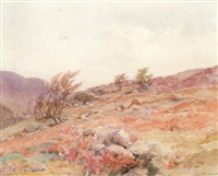 breeze blowing on top of derrybawn near glendalough by gladys wynne
