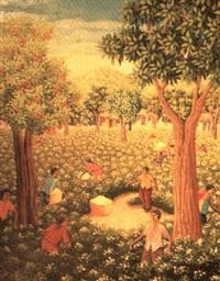 recolte de coton by edouard jean