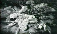 raisins et fraises des bois by simon saint-jean