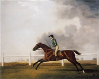 bay malton with john singleton up by george stubbs