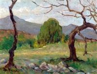 reflejo de sol - otoño (rio ceballos) by alfredo lazzari
