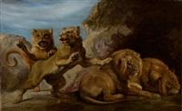 lions dans une caverne by frans snyders