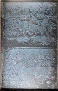 tombeaux des rois, bas relief végétal, près de jérusalem by joseph-philibert girault de prangey