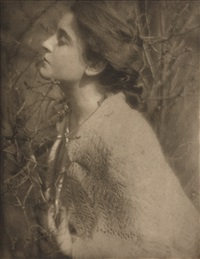 lilac budes by edward steichen