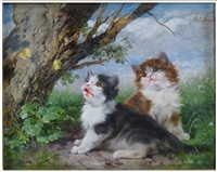 two kittens watching butterflies by julius adam the younger