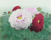 peonies in red and white by koichi nabatame
