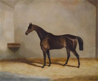 a bay racehorse in a stable by richard denew