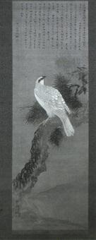 white falcon by okamoto shuki