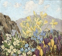 spring in wicklow by mabel young