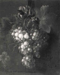 still life of grapes hanging from a blue bow by coenraet (conrad) roepel