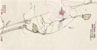 花开时节 by liang yu