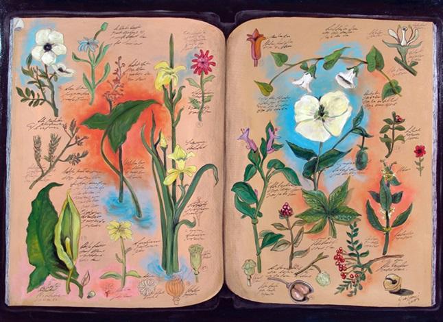 serie botánica antigua by eduardo gualdoni