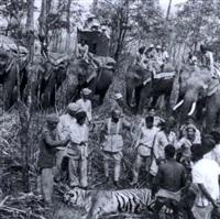 le maharadjah mysore sur la trace du tigre (in 2 parts) by ylla
