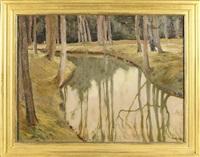 leśny strumień by adam bunsch