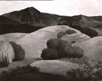 california landscape by frode nielsen dann