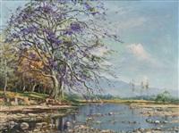 rio claro, valle del cauca by ricardo gomez campuzano