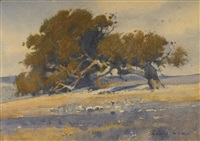 slanting oak by percy gray