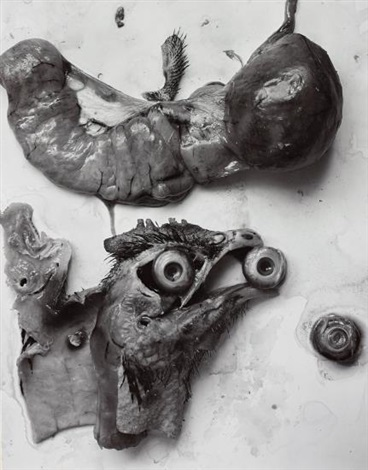 The Anatomy of a Chicken by Frederick Sommer on artnet