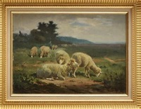 moutons au pâturage by g. tesier