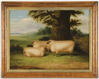 three sheep under a tree by william henry davis