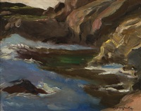 point lobos by paul dougherty