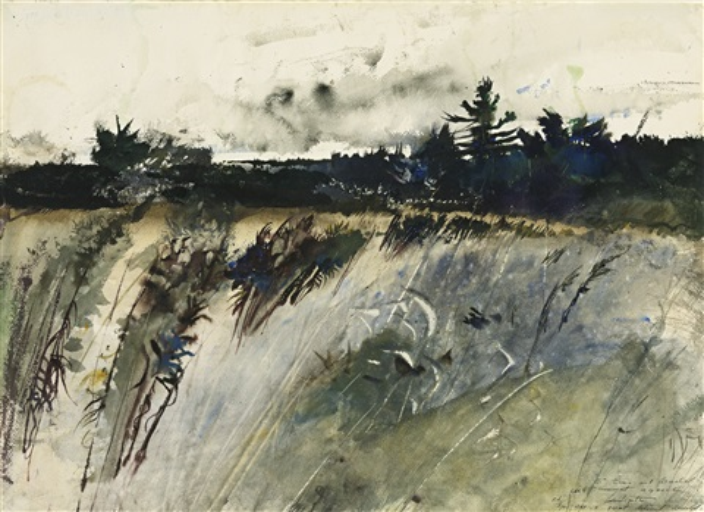 waldboro woods by andrew wyeth