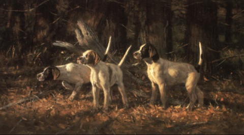 elhew pups by robert kennedy abbett