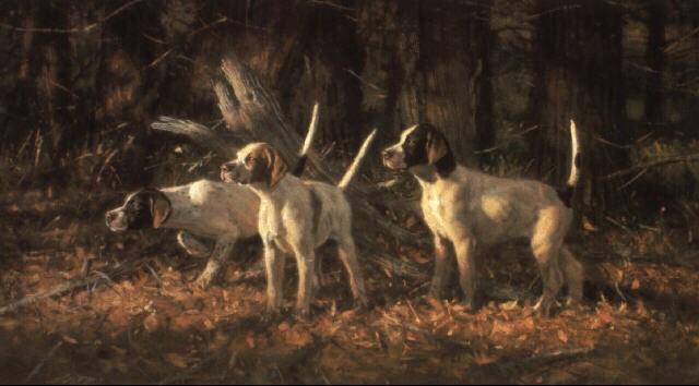 elhew pups by robert kennedy abbett