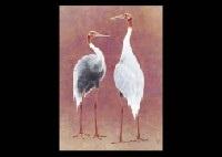 two cranes by kayo yamaguchi