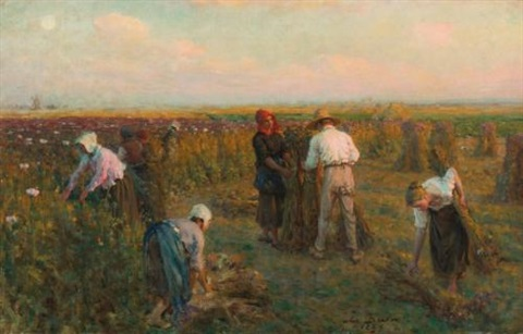 harvesting the oil poppies by jules breton